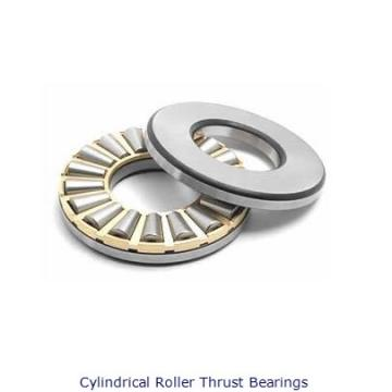 Rollway CT19 Cylindrical Roller Thrust Bearings